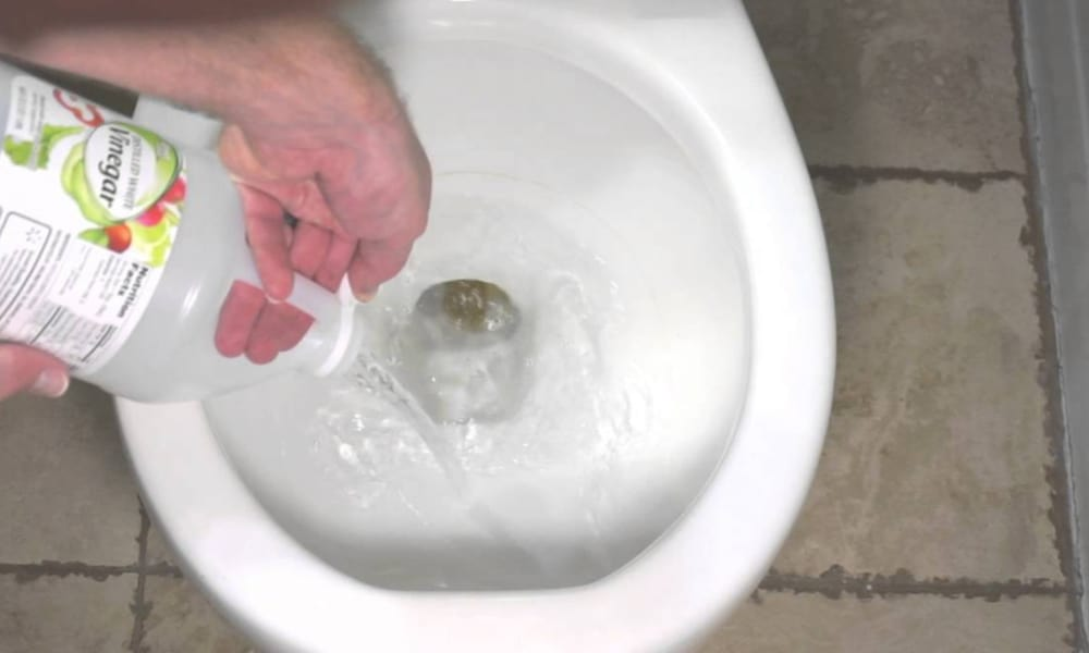Toilet Seat Cleaning with Vinegar